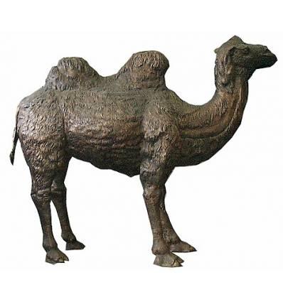 Chameau en bronze BRZ0361 ( H .220 x L :330 Cm )