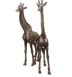 Girafe en bronze BRZ1159 ( H .167 x L :94 Cm ) Poids : 82 Kg