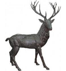 Cerf en bronze BRZ1671 ( H .216 x L .162 Cm ) Poids : 207 Kg