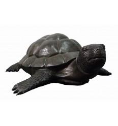 Tortue en bronze BRZ1686 ( H .32 x L .95 Cm ) Poids : 30 Kg