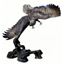 aigle en bronze BRZ0530 ( H .210 x L .210 Cm ) Poids : 300 Kg