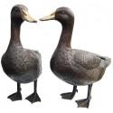 canard en bronze BRZ0207 ( H .40 x L .40 Cm ) Poids : 9 Kg