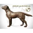 chien en bronze ad325-300  ( H .82 x L .120 Cm )