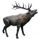 Cerf en bronze BRZ0892 ( H .178 x L .226 Cm )