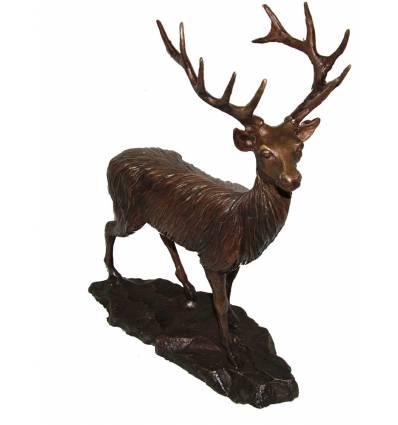 cerf en bronze BRZ0998 ( H .38 x L .30 Cm ) poids 3.5 kgs