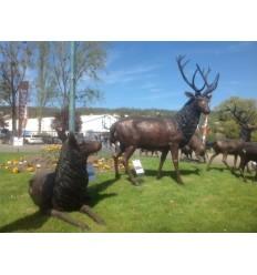 cerf en bronze et bois véritable brz1746 Poids 460 kgs